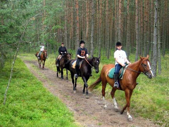 Pobierowo domki - jazda konna w okolicach Pobierowa